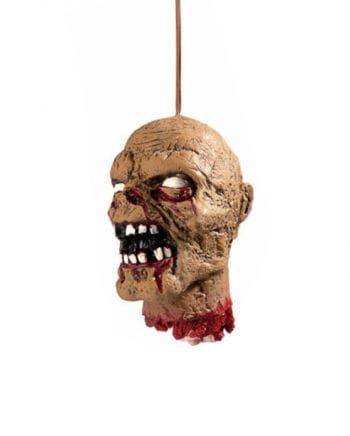 Schrumpfkopf Rotten Zombie