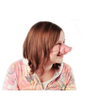 Schweinchen Nase