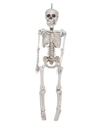 Skelett Hängefigur