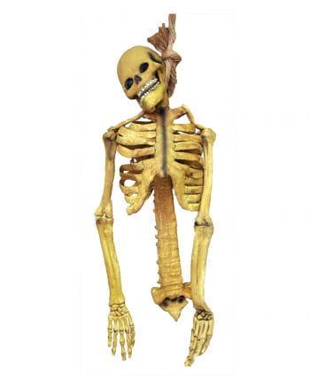Skelett Latex Torso