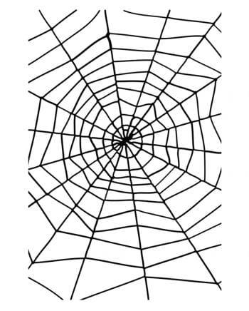 Spider web with spider