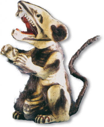 Angriffslustige Ratte