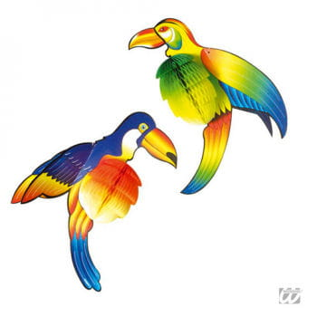 Honeycomb colorful Tucan