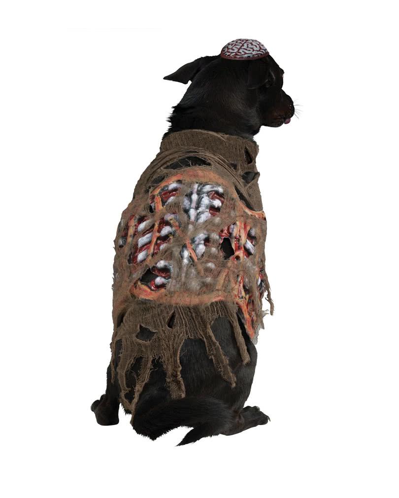 Zombie Kostum Fur Hunde Hundekostum Fur Halloween Karneval Universe