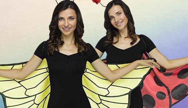 Ladybug wings & bees wings