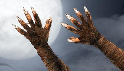 Werewolf Gloves