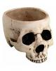 Antike Totenschädel Schale 470ml