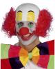 Clowns Wig