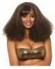 Disco Diva Wig Brown