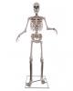 https://inst-0.cdn.shockers.de/ku_cdn/out/pictures/generated/product/1/100_100_100/gigantisches-skelett-halloween-animatronic-skeleton-animated-prop-halloween-und-horror-deko-51252.jpg