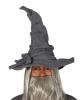 Grauer Zauberer Hut