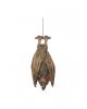 Hanging Bat 36cm Latex