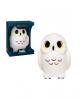 Hedwig - Harry Potter Funko SuperCute Plushies