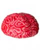 Lebensgroßes Squeeze Gehirn