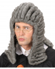 Judge Wig Grey