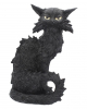 Salem Witch Cat 32,5cm