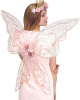 Shimmering Fairy Wings With Flowers Rose Gold