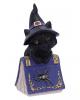Schwarzes Hexenkätzchen mit Zauberbuch 12,7cm