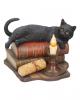 Black Cat with Magic Books 20,5cm