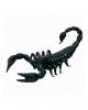 Schwarzer Skorpion 18cm