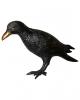Schwarze Krähe Deluxe 43 cm