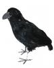 Schwarze Krähe mit Federn 30 cm