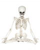 Skelett im Yoga Sitz 18 cm