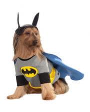 hunde hut haifisch als lustige hunde verkleidung karneval universe. Black Bedroom Furniture Sets. Home Design Ideas