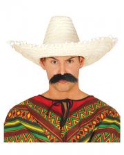 93a579a0aaf Carnival Hats -Funny Hats and Caps