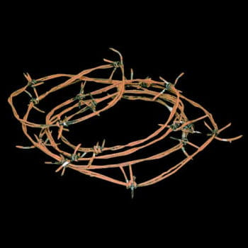Barbed wire Rust Realistic Deluxe 6m