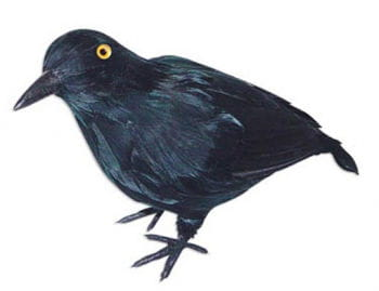 Raven black small 22cm