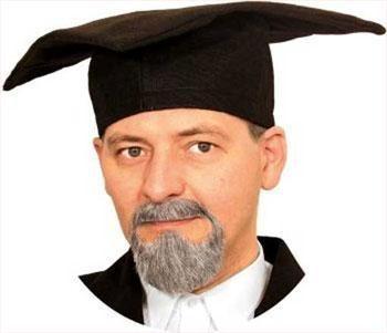 Professor beard combi gray