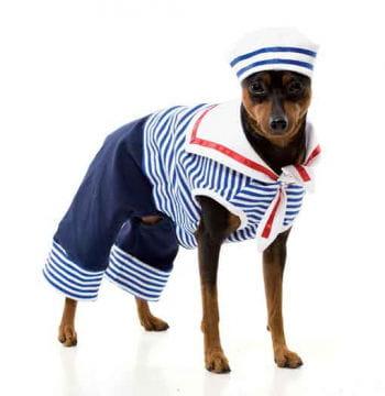 Matrosen Hundekostüm Gr. M