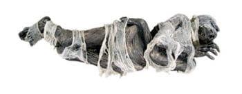 Mummified corpse