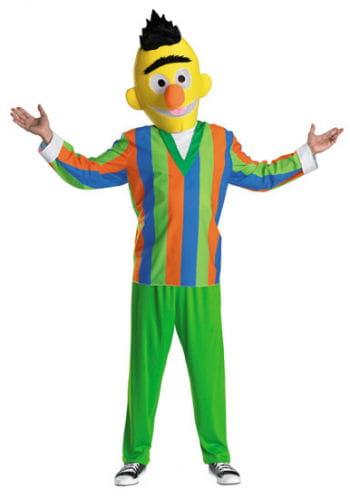 Sesame Street Bert Costume Size M