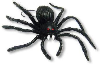 Hanging Black Spider