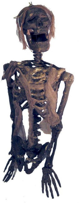 Verottendes Kartoffelacker Skelett