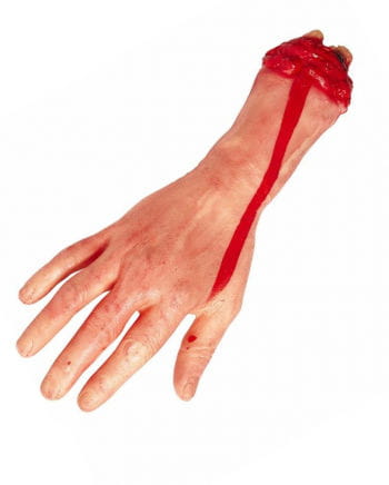 Chopped bloody hand