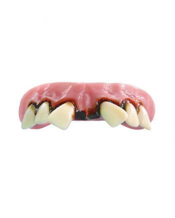 Aviator acrylic teeth