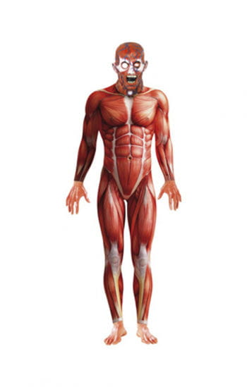 Anatomy Body Suit with mask