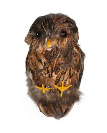 Deco brown owl