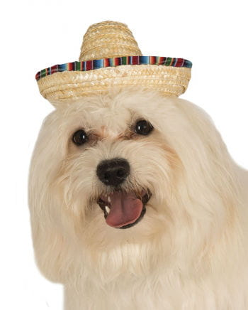 Colorful Sombrero For Dogs