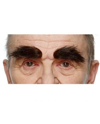 Buschige Schwarzbraune Augenbrauen
