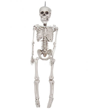 Halloween Skeleton Hanging Figure 95 Cm
