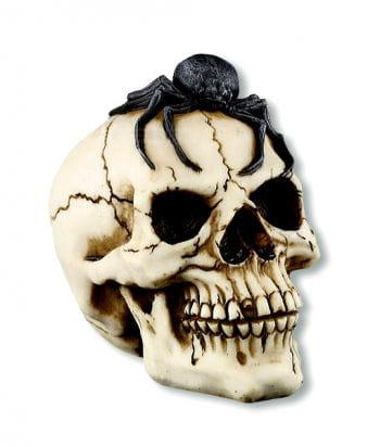 Deko Totenschädel mit Vogelspinne