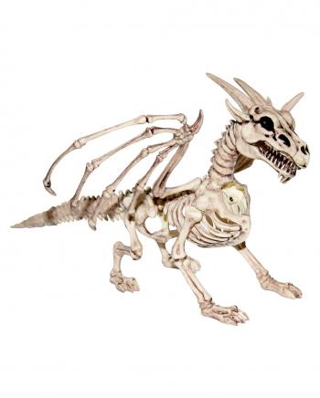 Drachen Skelett 30 cm