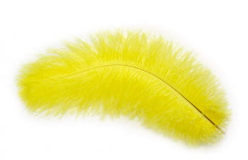 Gelbe echte Straußenfeder