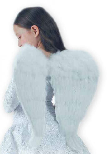 Angel Wings White 60 x 50cm