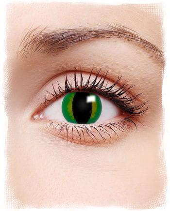 Green Dragon Kontaktlinsen