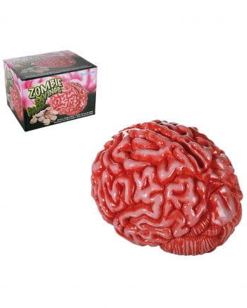 Spardose blutiges Gehirn
